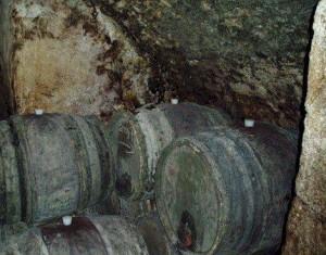 Bonneau Cellar1 300x235 Traveling to Chateauneuf du Pape, Bonneau, Charvin, Beaucastel