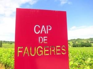 Cap de Faugeres1 300x224 Chateau Cap de Faugeres Cotes de Castillon Bordeaux, Complete Guide