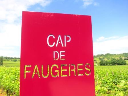 Cap de Faugeres1 Wine Tasting Notes, Ratings