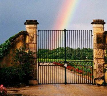 Carbonnieux 2103 harvest Chateau Carbonnieux Pessac Leognan Bordeaux Complete Guide