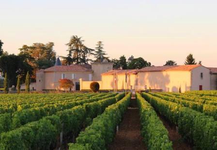 Chateau Coutet Barsac Chateau Coutet Sauternes Bordeaux, Complete Guide