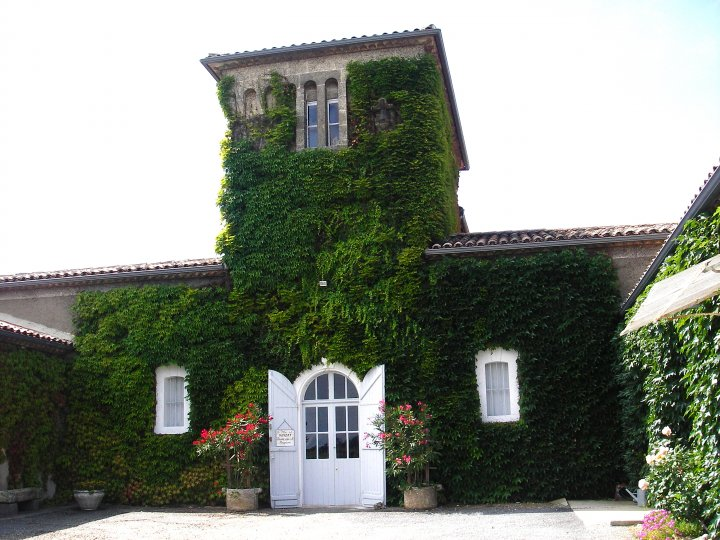 Clos Haut Peyraguey Sauternes Wine Tasting Notes, Ratings