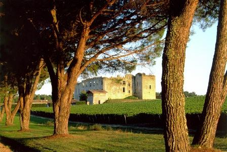 De Fargues Chateau Wine Tasting Notes, Ratings
