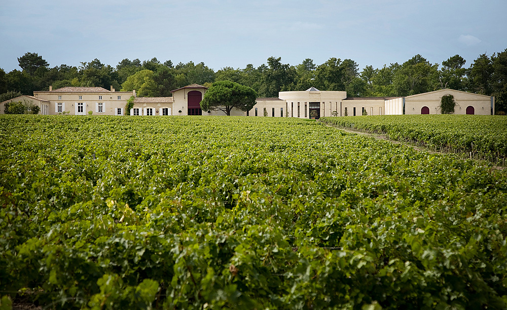 Domaine Chevalier Wine Tasting Notes, Ratings