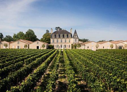 GRAND PUY LACOSTE 021 Chateau Grand Puy Lacoste Pauillac Bordeaux Wine, Complete Guide