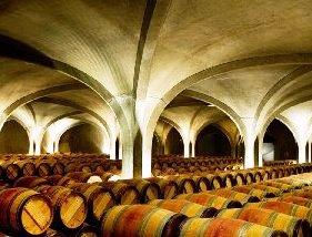 Gruaud Larose Barrel Cellar