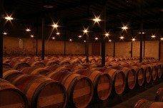 Gruaud barrels Gruard Larose St. Julien Bordeaux Wine Coming on strong