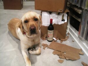 Herky Petrus 300x225 The Wine Cellar Insider Debut Post  on Bordeaux wine and more