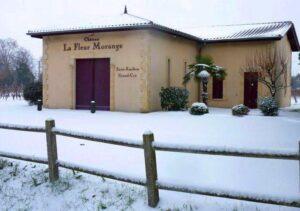 La fleur Morange Snow1 300x211 Chateau La Fleur Morange Mathilde St. Emilion, Complete Guide