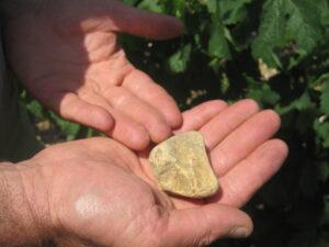 Lafleur terroit 300x225 Chateau Lafleur Pomerol Bordeaux Wine, Complete Guide