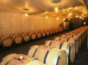 Le Pin Barrel Cellars 300x222 Le Pin Pomerol Bordeaux Wine, Complete Guide