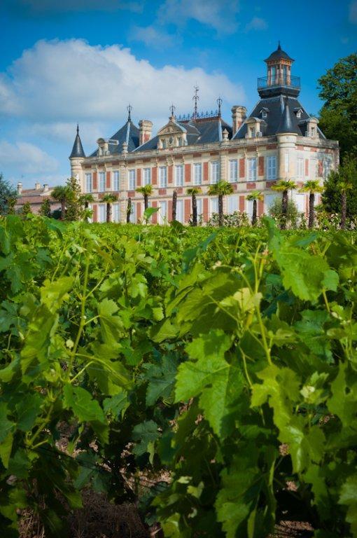 MarquisDalesme1 Wine Tasting Notes, Ratings