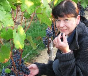 Murielle Grapes1 300x260 Valandraud Jean Luc Thunevin Murielle Andraud a Family Affair