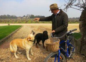 Smith Haut Lafitte Daniel Cathiard 300x217 2015 Pessac Leognan Ratings Tasting Notes, Tips on Best Wines to Buy!