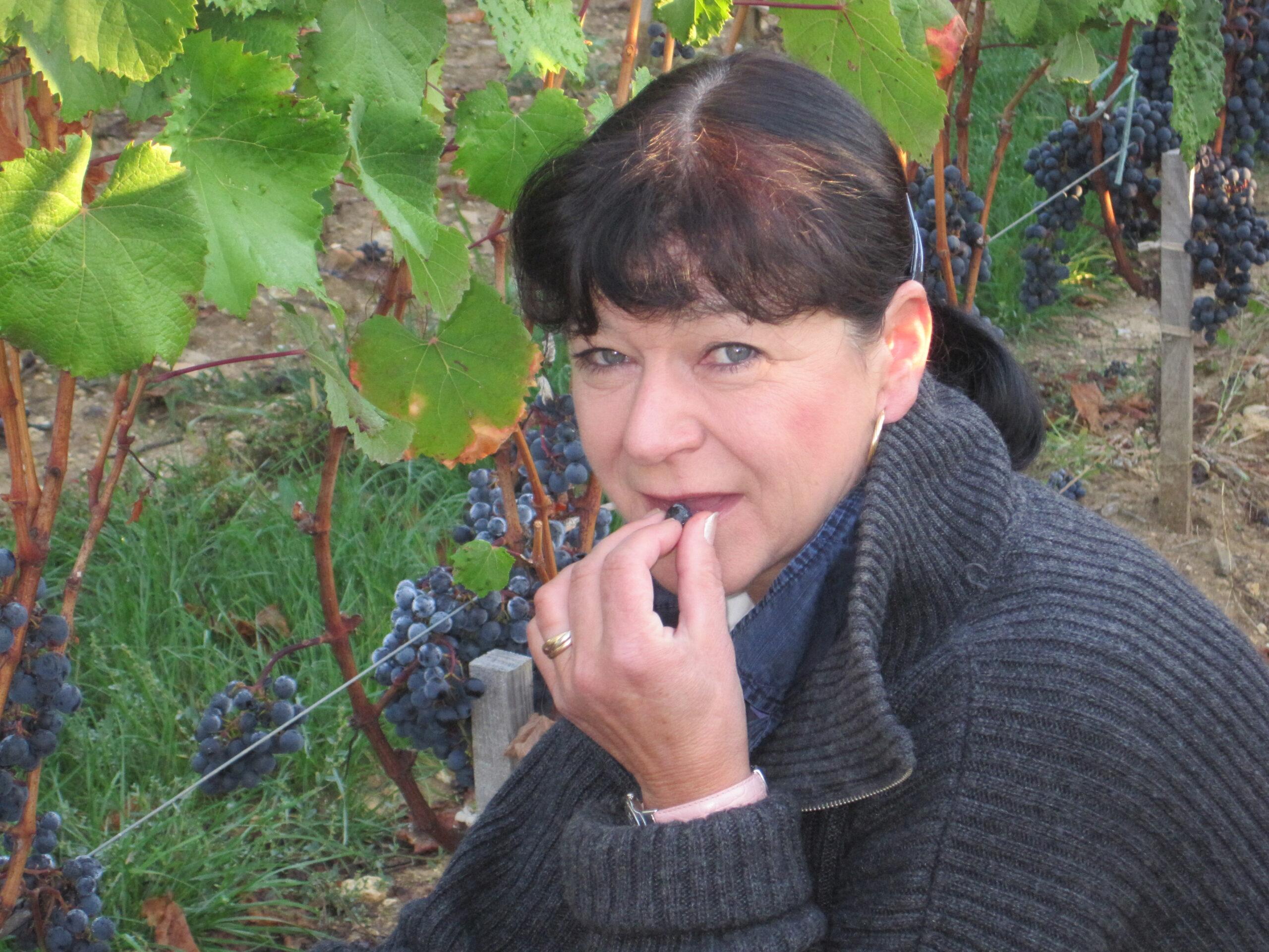 Wine Tasting at Chateau Latour, Chateau Mouton and Valandraud