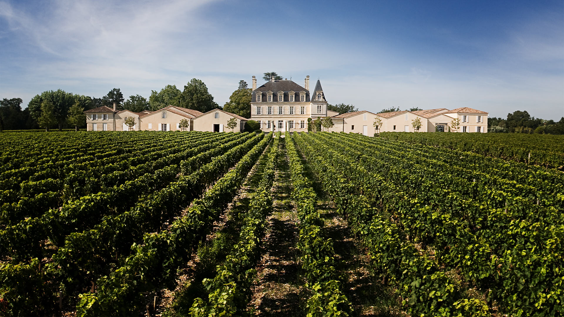 grandpuylacoste chateau Wine Tasting Notes, Ratings