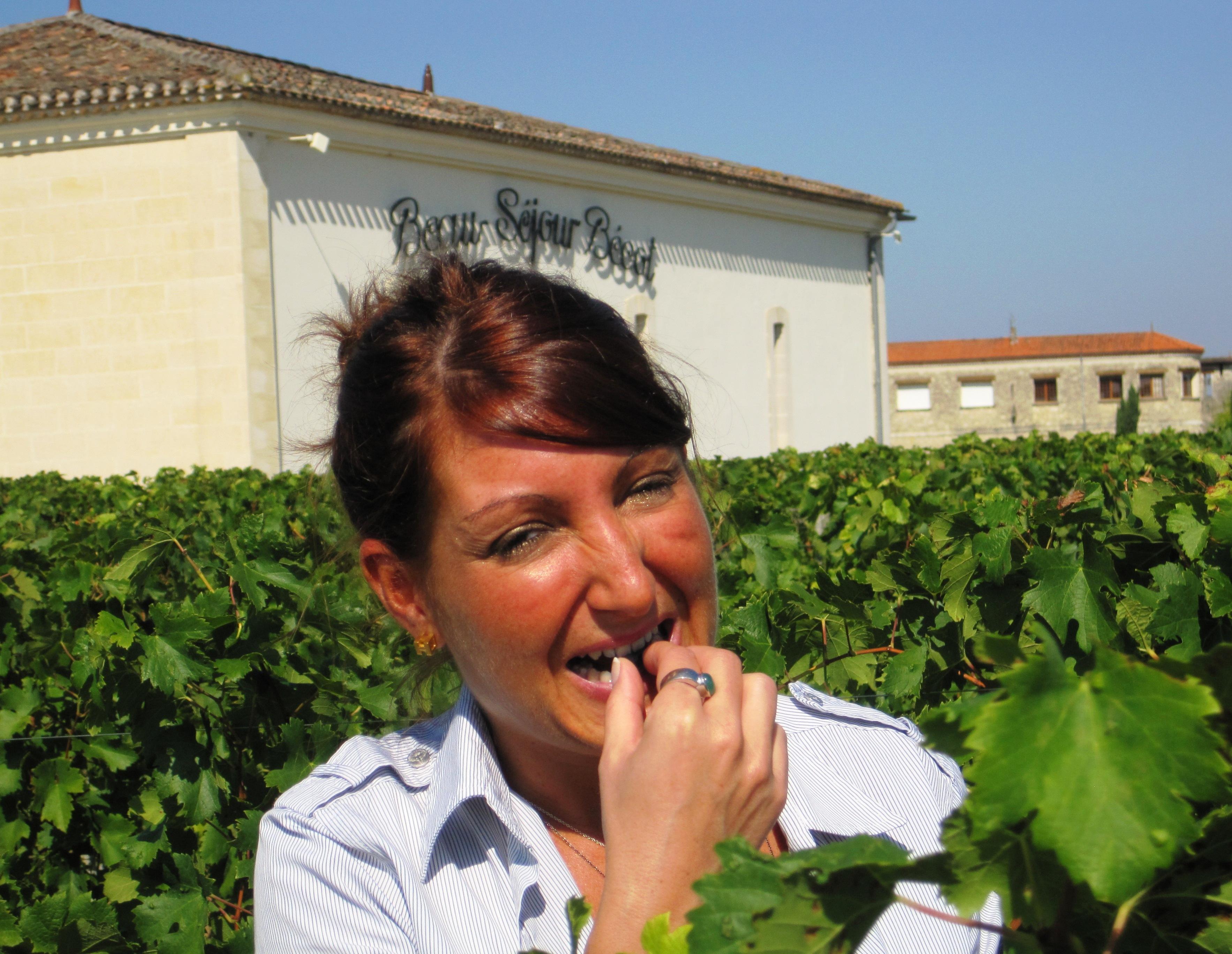 2009 St. Emilion Bordeaux Wine Pt 1 2009 Vintage Report