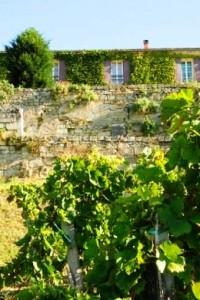 Tertre Daugay 200x300 Chateau Tertre Daugay St. Emilion Bordeaux, Complete Guide