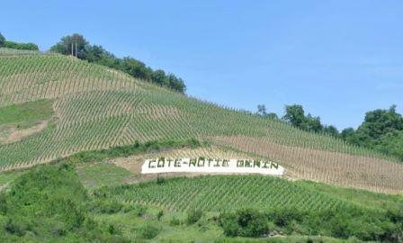 Domaine Gerin Wine Tasting Notes, Ratings