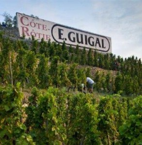 Guigal Cote Rotie 293x300 Cote Rotie Everything you want to know, the Complete Rhone Wine Guide