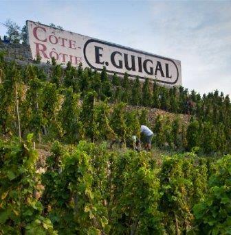 Guigal Cote Rotie Wine Tasting Notes, Ratings