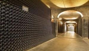 BEAU CELLAR 300x171 Beaucastel Chateauneuf du Pape, Rhone Wine, Complete Guide