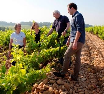 VieuxDonjon1 1 Le Vieux Donjon Chateauneuf du Pape Rhone Wine, Complete Guide