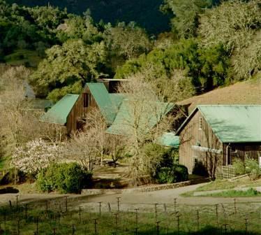 Araujo Winery Eisele Vineyard Araujo Napa Valley California Wine Cabernet Sauvignon