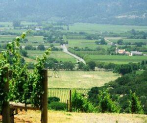 Dalla Valle