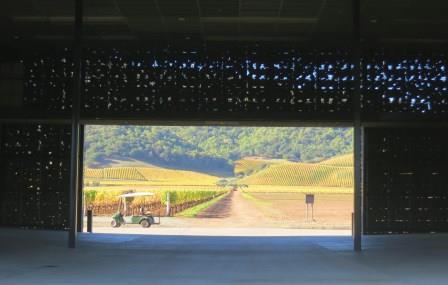 Dominus Winery Dominus Estate Napa Valley California Wine Cabernet Sauvignon