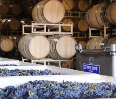 Schrader Cellars Wine Tasting Notes, Ratings