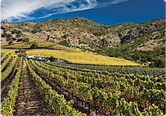 Shafer Hillside Shafer Vineyards Napa California Cabernet Sauvignon Merlot Chardonnay