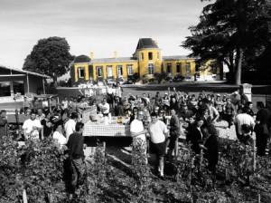 2011 Lafon Rochet harvest 1 300x224 2011 Lafon Rochet Harvest Interview with Basile Tesseron