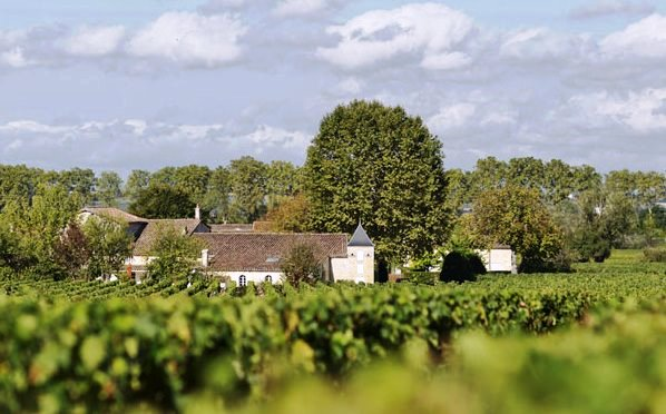 Bourgneuf chateau Wine Tasting Notes, Ratings