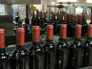 P bottles3 300x225 1984 Bordeaux Wine Vintage Report and Buying Guide
