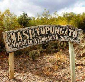 Masi sign 300x289 Masi Tupungato, Touch of Italy in Mendoza Argentina