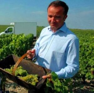 HBblanc 300x298 2012 Bordeaux White Wine Harvest Over, Red Wine Grapes Still Not Ripe