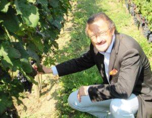 Stephan von Neipperg Vineyard 300x233 Stephan von Neipperg 2012 Bordeaux Vintage and Harvest Interview