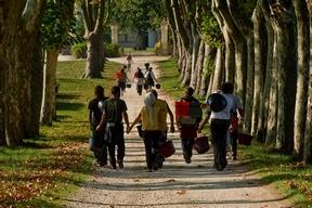 2012 Bordeaux harvest pickers walking
