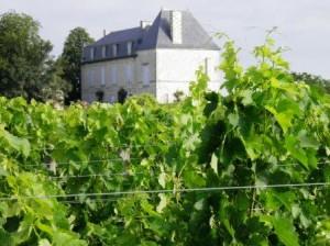 Edmus1 300x224 Chateau Edmus St. Emilion Bordeaux, Complete Guide