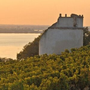 Cotes de Bourg2 300x300 Cotes de Bourg Bordeaux Complete Guide, Best Wines Vineyards Top Chateaux