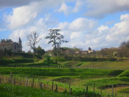 Bordeaux value wines