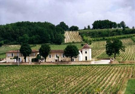 COTE MONTPEZAT Chateau Cote Montpezat Cotes de Castillon Bordeaux Complete Guide