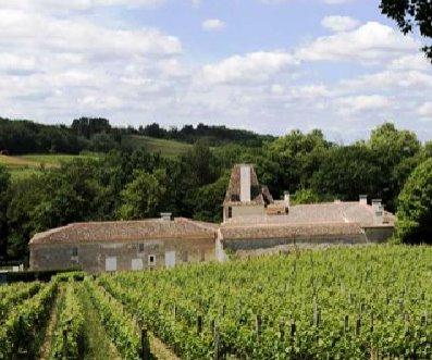 Jean Faux Chateau 1 Chateau Jean Faux Bordeaux Superieur Wine, Complete Guide