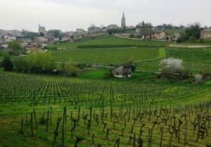 St. Emilion Grand Cru Classe Wines2 300x209 St. Emilion Grand Cru Classe  Chateaux Producer Vineyard Guide