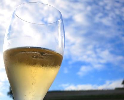 The Wine Cellar Birthday Celebration