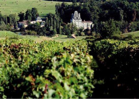 de lIsle Fort Chateau lIsle Fort Bordeaux Superieur Wine, Complete Guide