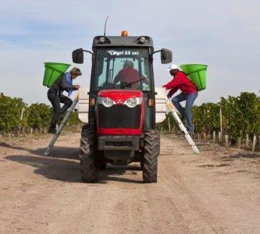 2013 Brane Cantenac pickers 2013 Brane Cantenac Harvest Growing Season Vintage Report