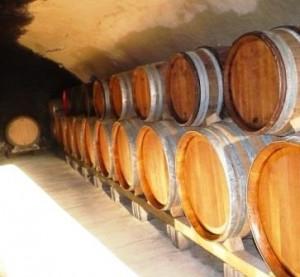 Clos des Brusquieres1 300x277 Clos des Brusquieres Chateauneuf du Pape Rhone Wine, Complete Guide