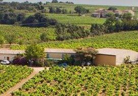 Senechaux Domaine des Senechaux Chateauneuf du Pape Rhone Wine, Complete Guide